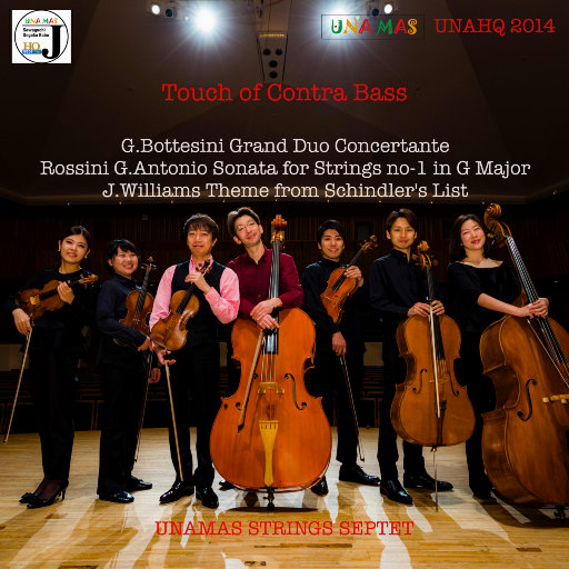 Touch of Contra Bass,UNAMAS String Septet