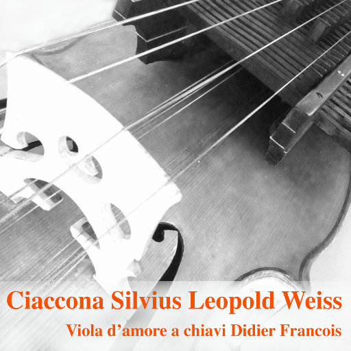 恰空(Ciaccona),Didier François