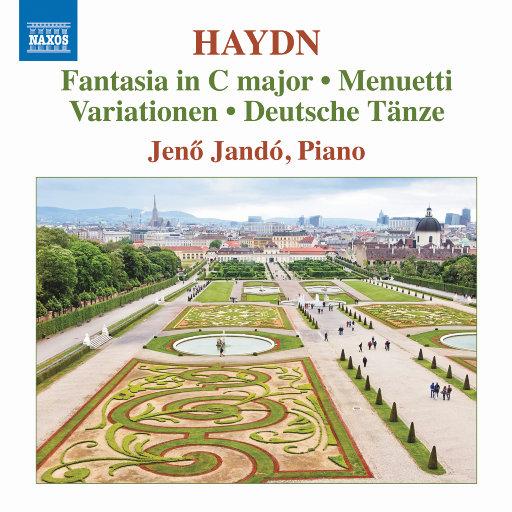 海顿:钢琴作品集,简诺·扬多