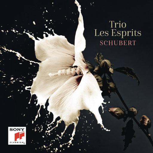 舒伯特: 钢琴三重奏 / 吉他形大提琴奏鸣曲 (Arpeggione Sonata),Trio Les Esprits