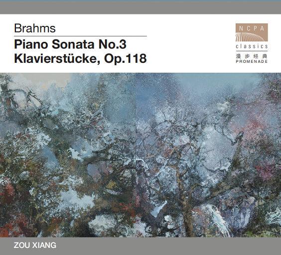 勃拉姆斯钢琴名曲——《第三钢琴奏鸣曲》《六首钢琴小品》 (2.8MHz DSD),邹翔