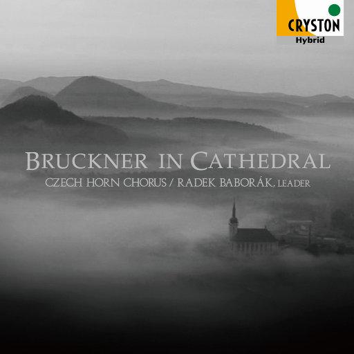 Bruckner in Cathedral (布鲁克纳在大教堂 - 天堂音乐 - ) [2.8MHz DSD],Czech Horn Chorus,Radek Baborak