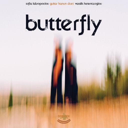 蝴蝶 (Butterfly),Guitar Kanun Duet
