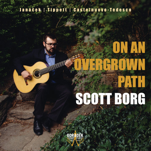 在杂草丛生的道路上 (On An Overgrown Path),Scott Borg