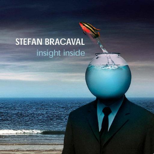 Insight Inside,Stefan Bracaval