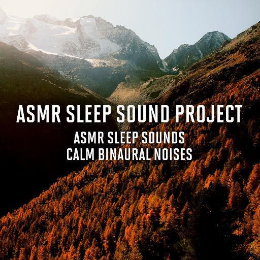 ASMR助眠计划-回归平静,ASMR Sleep Sound Project