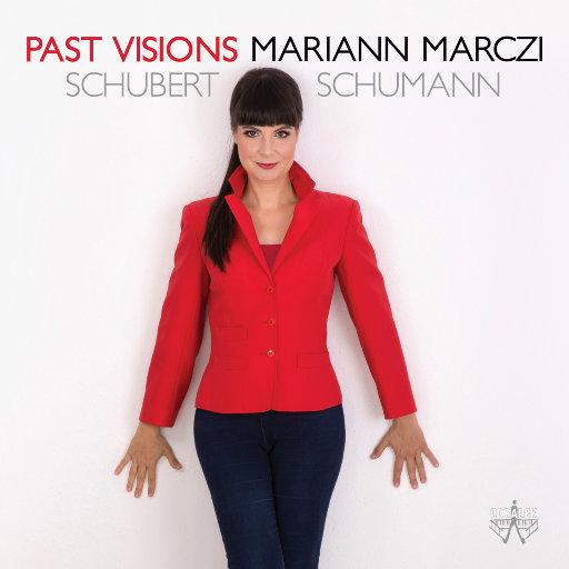 过去的幻象 (Past Visions),Mariann Marzci