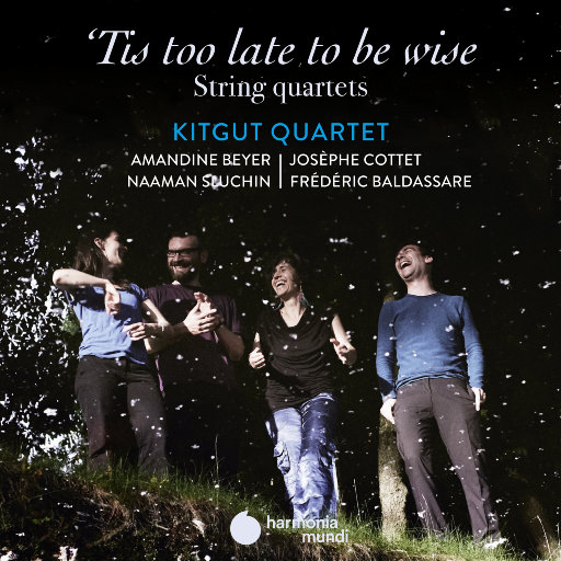 迟来的智慧 ('Tis too late to be wise),Kitgut Quartet