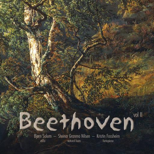 Beethoven Sonatas vol II [352.8kHz DXD],Kristin Fossheim
