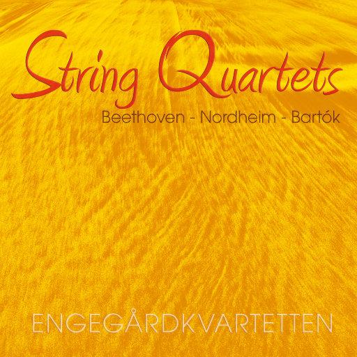STRING QUARTETS vol. II (352.8kHz DXD),Engegårdkvartetten