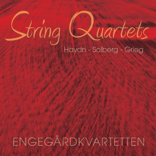 STRING QUARTETS vol. I Haydn - Solberg - Grieg (352.8kHz DXD),Engegård Quartet