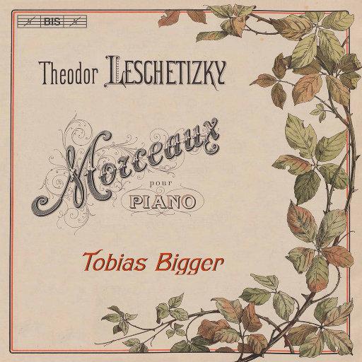 莱切蒂茨基: 钢琴作品集,Tobias Bigger