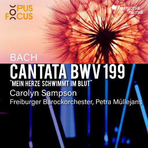 巴赫: 康塔塔, BWV 199,Freiburger Barockorchester,Petra Müllejans,Carolyn Sampson