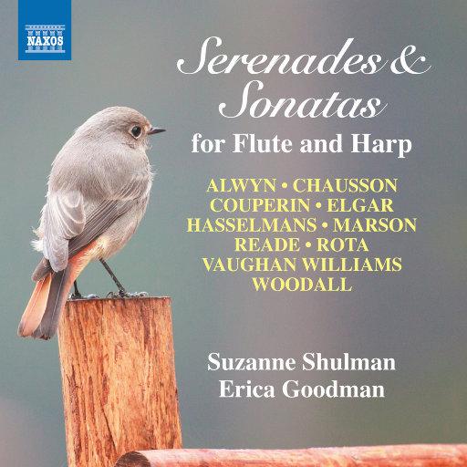 长笛和竖琴音乐会: 小夜曲 & 奏鸣曲,Suzanne Shulman,Erica Goodman