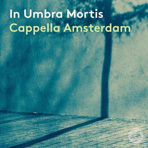 阴影之下 (In umbra mortis),Cappella Amsterdam,Daniel Reuss