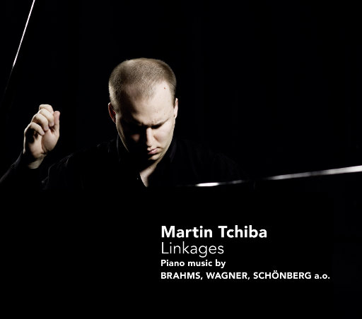 马丁·奇巴: 联系 (Martin Tchiba: Linkages),Martin Tchiba