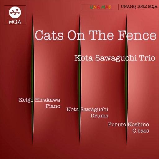 Cats on the Fence (MQA),Kota Sawaguchi Trio