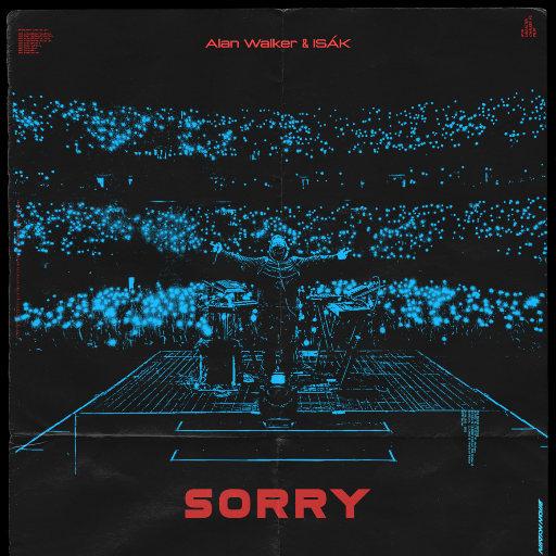 Sorry,Alan Walker
