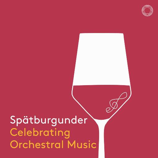 黑皮诺葡萄酒: 喝彩管弦乐(Spätburgunder: Celebrating Orchestral Music),Various Artists