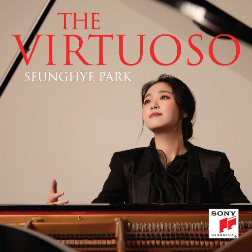 贤者 (The Virtuoso),Seunghye Park