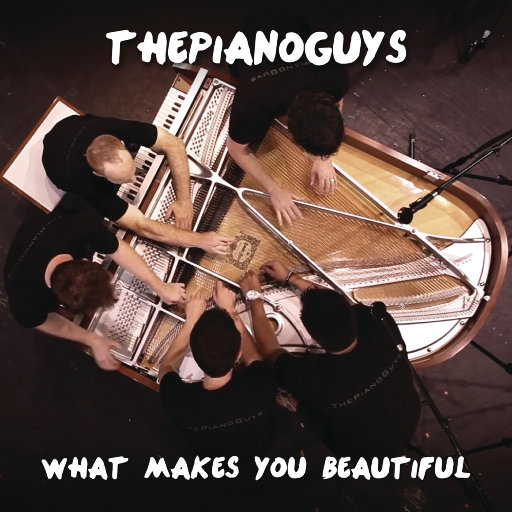 What Makes You Beautiful,The Piano Guys